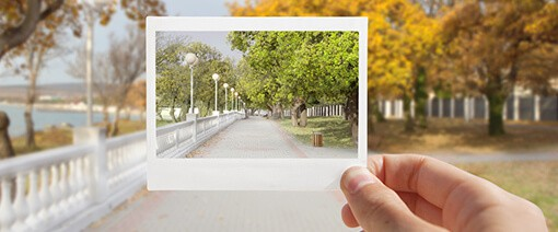 Holding up a polaroid which show the same image as background of autumn trees