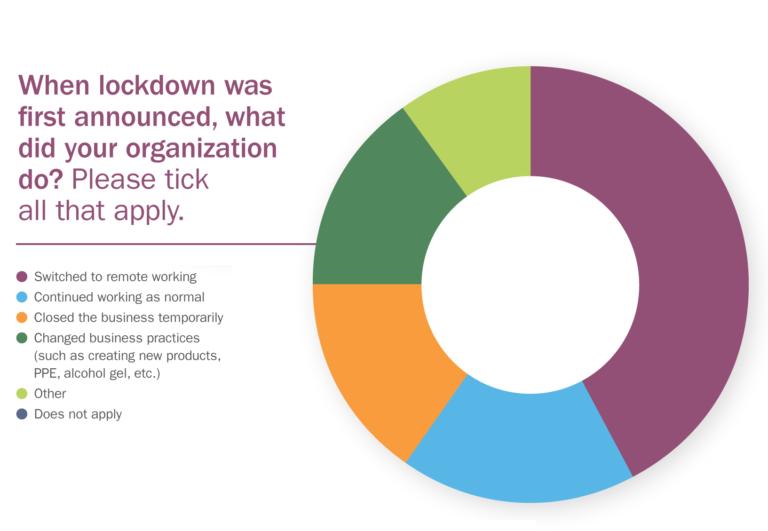 Lockdown donut chart