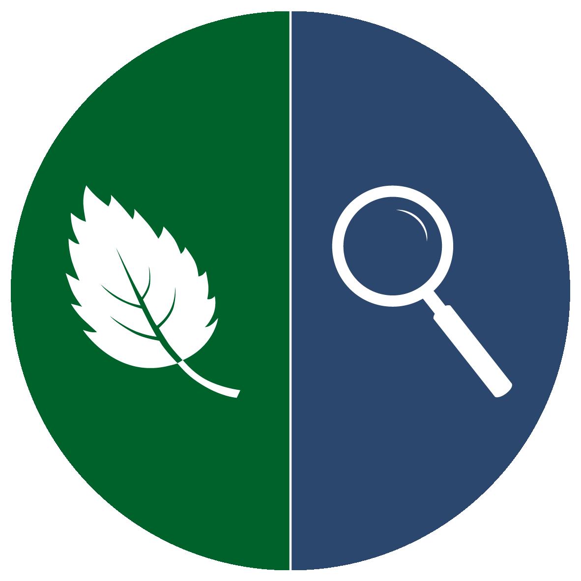 White magnifying glass icon on blue circle